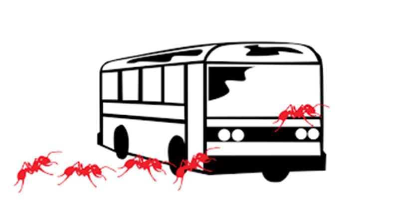 автобус с мравки в Русе