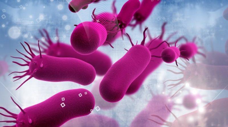бактерии резистентност