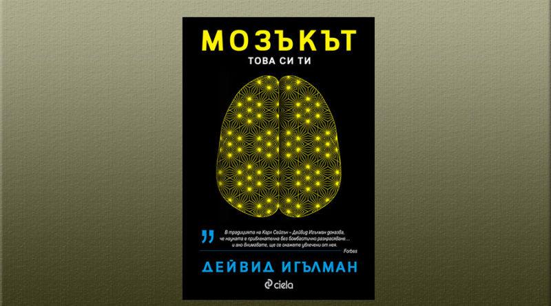 Мозъкът Дейвид Игълман
